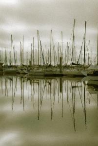Photo du Mois 2013 06 reflets 006