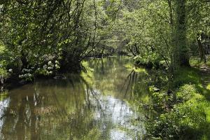 Photo du Mois 2012 05 eau 005