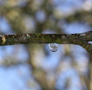 Photo du Mois 2012 05 eau 011