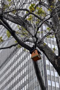 Photo du Mois 2013 04 architecture 005